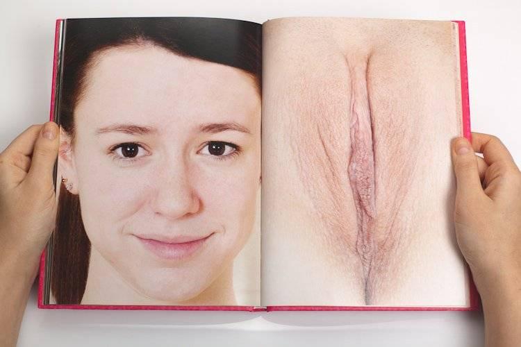 Строение женской письки в 27 фотография